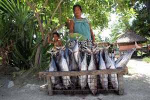 A woman sells skipjack tuna, caught by her husband earlier that day in Tarawa. Local fishermen are disgruntled by the practice of foreign purse-seiners selling their by-catch at heavily reduced prices to the community.