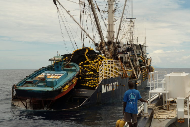 Fisheries sector 'key economic driver' in Pacific Islands states