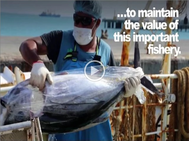 Tuna: talk of the town in Manila this week