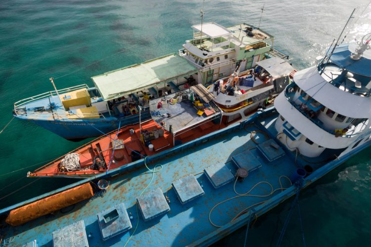 Court dismisses Palau's case against Philippine fish carrier