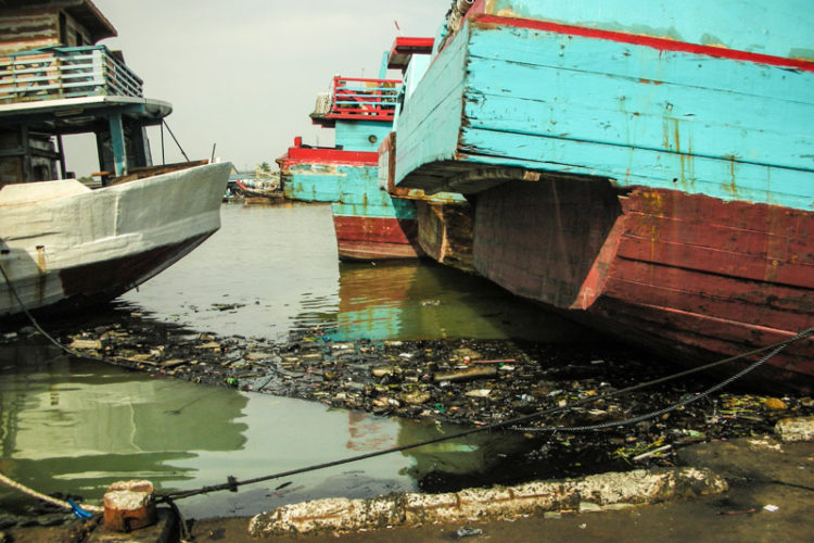 Marine pollution originating from purse seine and longline fishing vessels