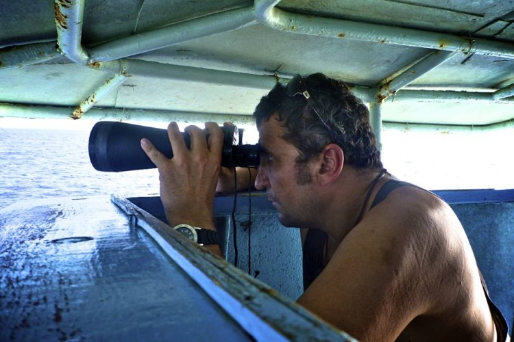 Man on fishing vessel looking through binoculars for seabirds diving onto baited hooks. Photo: Francisco Blaha.