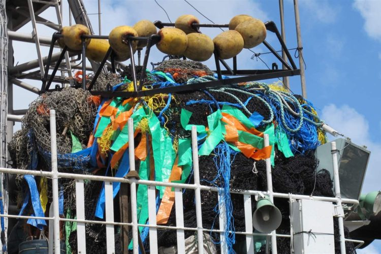 Stronger Rules Needed for Widely-Used Tuna Fishing Gear in Pacific Ocean