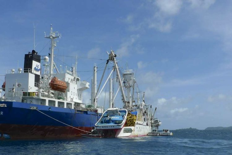FSM to review tuna fishing access concession practices