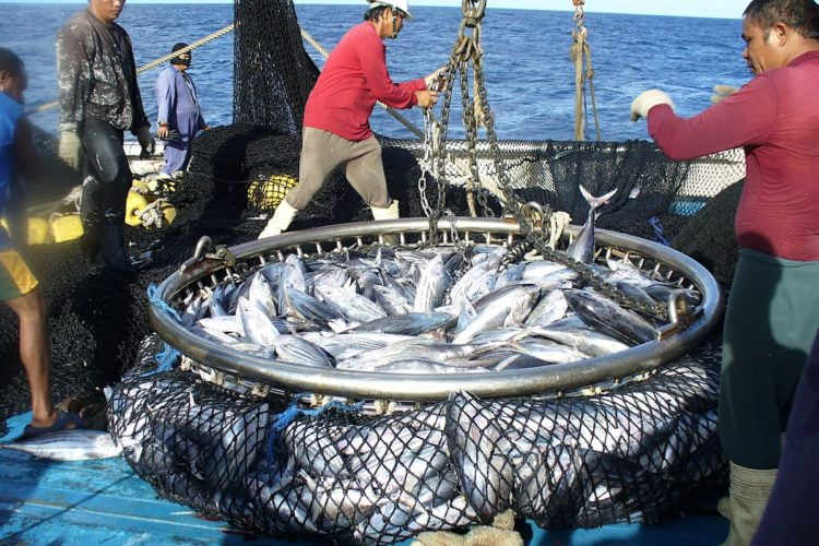 Pacific fishing nations strengthen rules to protect their tuna and economies