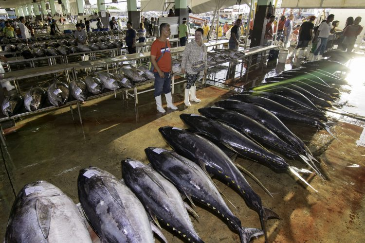 The Tuna Industry: Embracing technologies and sustainable strategies