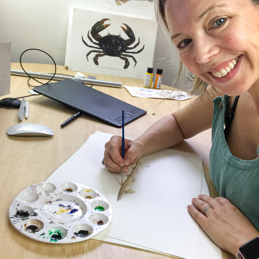 Shark and ray artist Lindsay Gutteridge sitting at a desk painting a shark. Photo SPC