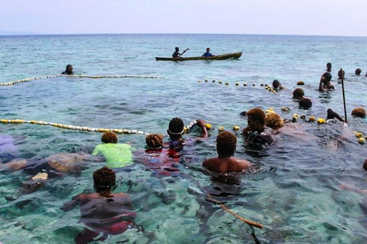 A group of men from Fumamato'o and men nearby communities fish together in shallow water (about shoulder depth) when the open-and-close area was opened. Photo WorldFish/Bira'au Wilson Saeni.