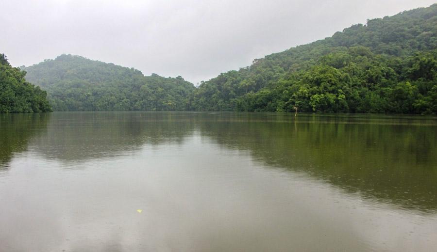 Thickly vegetated hillsides and heavily mangrove treed water edges of Puriasi Management Area. Photo WorldFish/Bira'au Wilson Saeni.