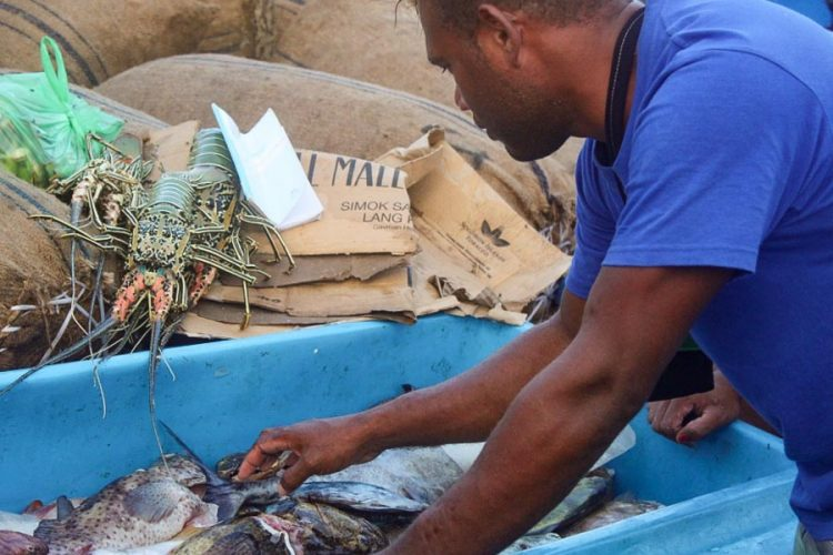 Solomons province begins work to develop Russell Islands fisheries