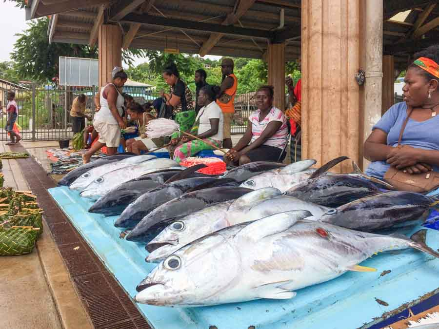 Sellers of tuna and reef fish at the Gizo Fish market. Photo George J Maelagi.