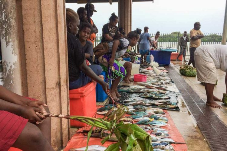 Vendors stand or sit on coolers under roof, with many small fish laid out for sale on tarps in front of them, at Gizo Fish Market, Solomon Islands. Photo George J Maelagi.