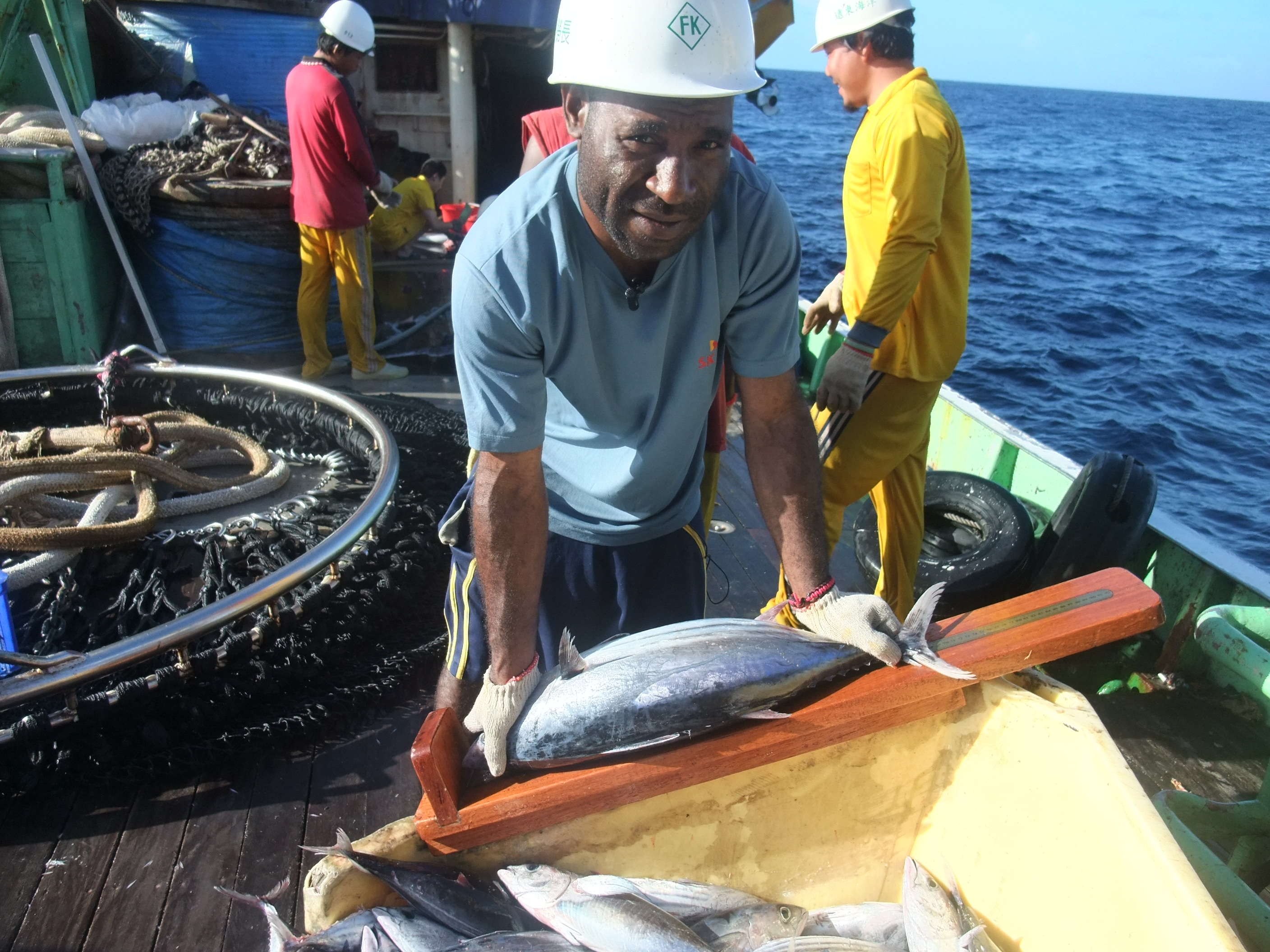 Micronesia and Marshall Islands lead the way in fisheries sustainability