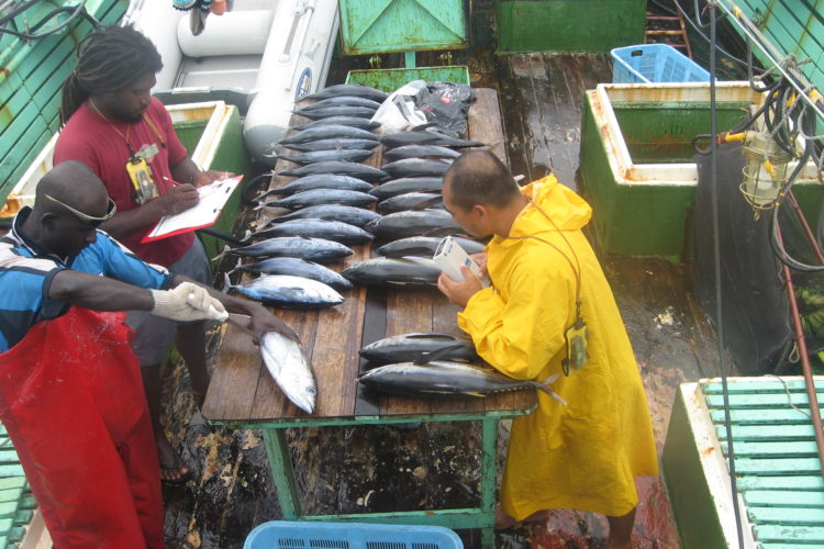 Crucial turning point for world's biggest fishery