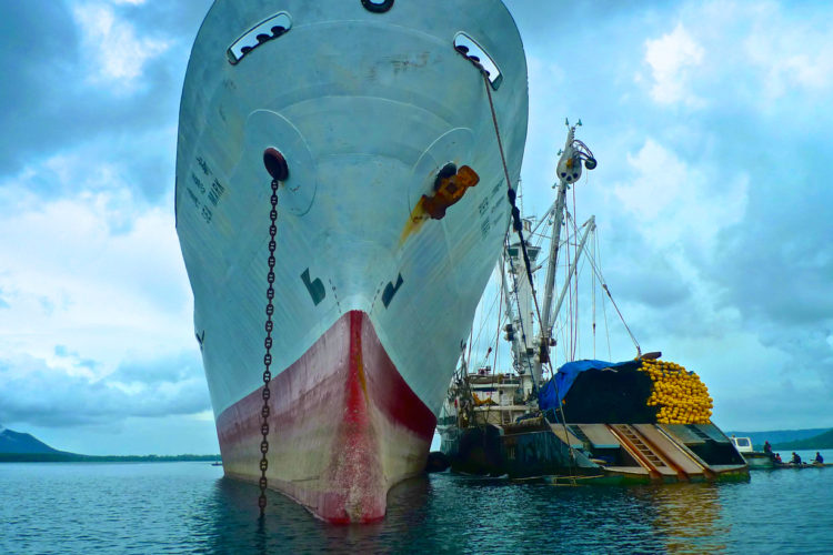 High seas transhipments of tuna targeted for action