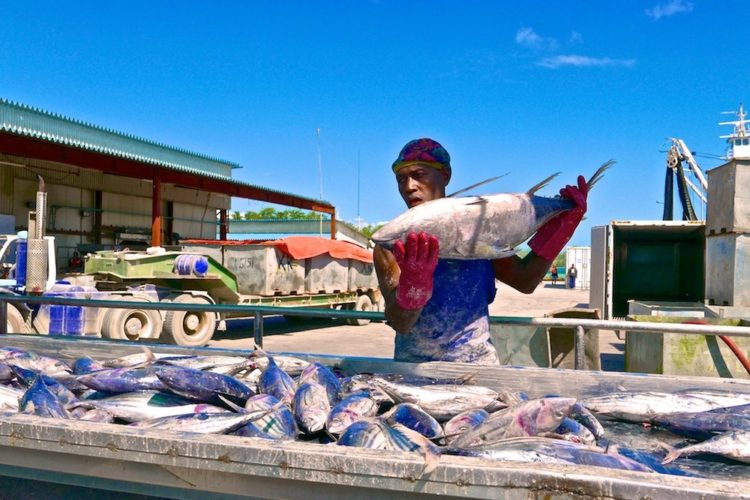 Kiribati gains EU market access - copyright francisco blaha