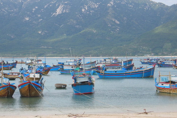 Vietnam asked to step up efforts to stop marauding blue boats