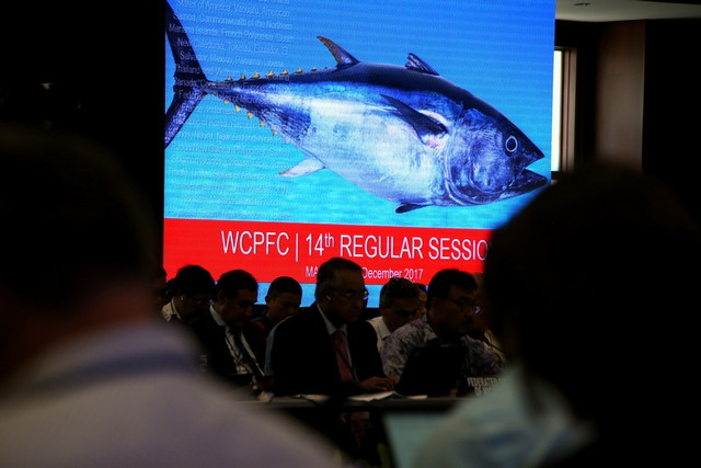 Calls for ban on rampant tuna transhipment in the high seas