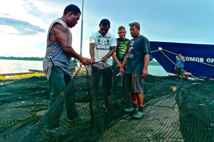 FFA on Solomons' Tokelau Agreement withdrawal
