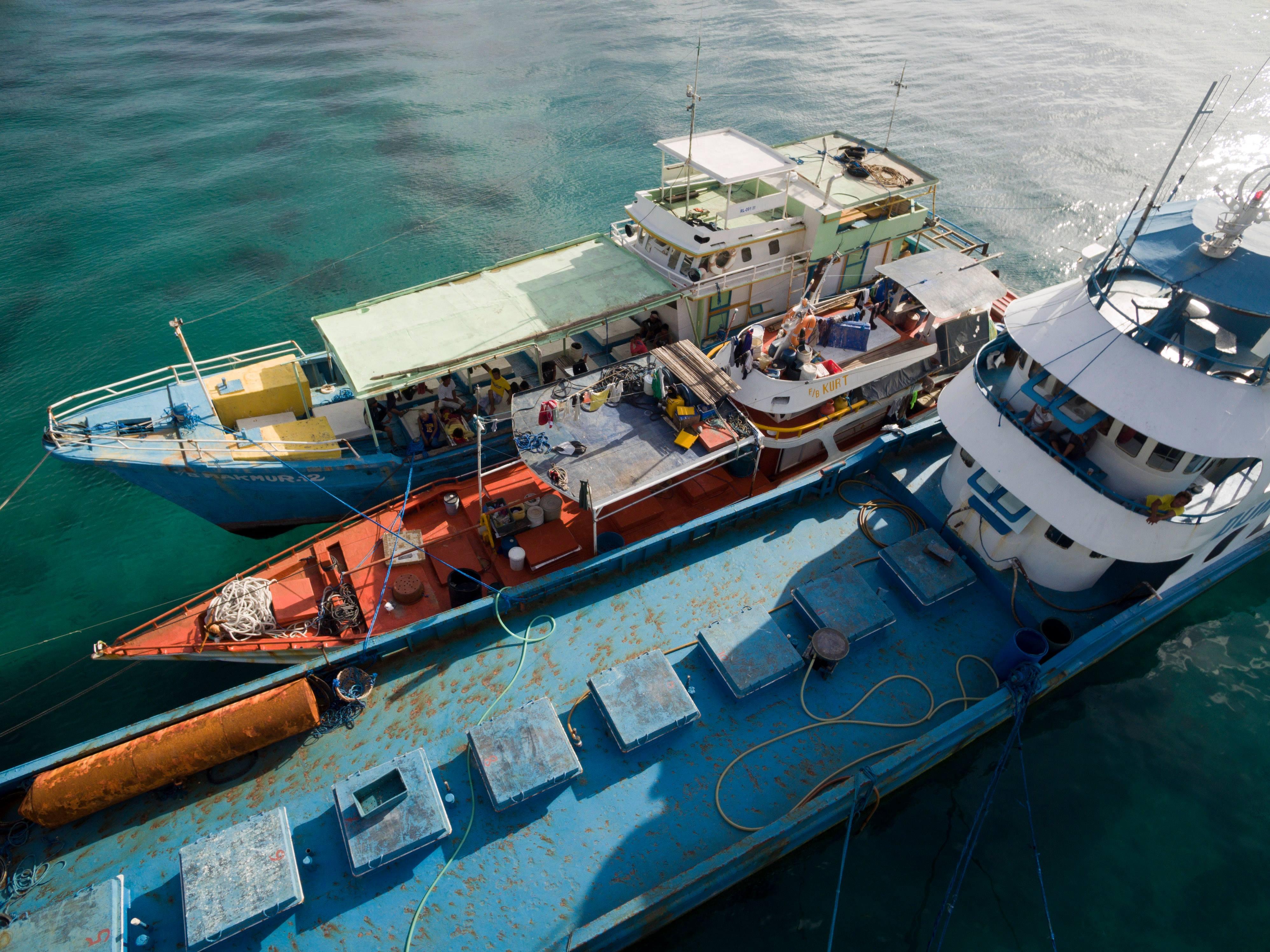 Court dismisses Palau's case against Philippine fish carrier