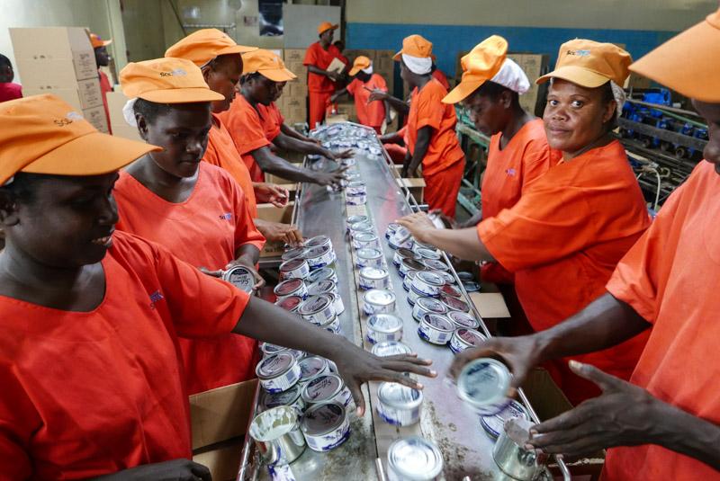 Solomon Islands fish workers - copyright Francisco Blaha