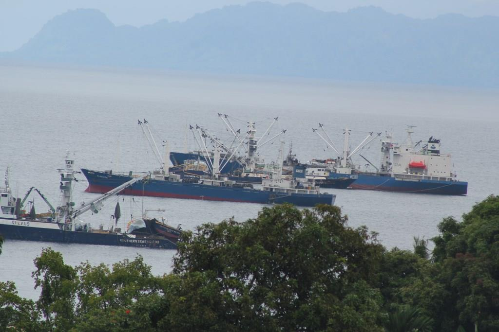 Solomons makes $399M from tuna alone, in 2017