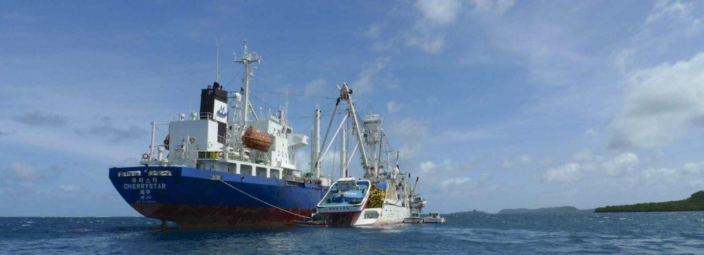 Transhipment boats in Phonpei lagoon