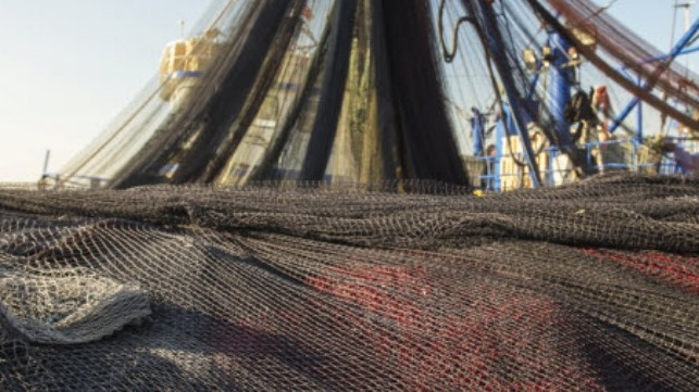 WWF Cites Charity's Work in Pacific Fisheries Crew Welfare Initiative