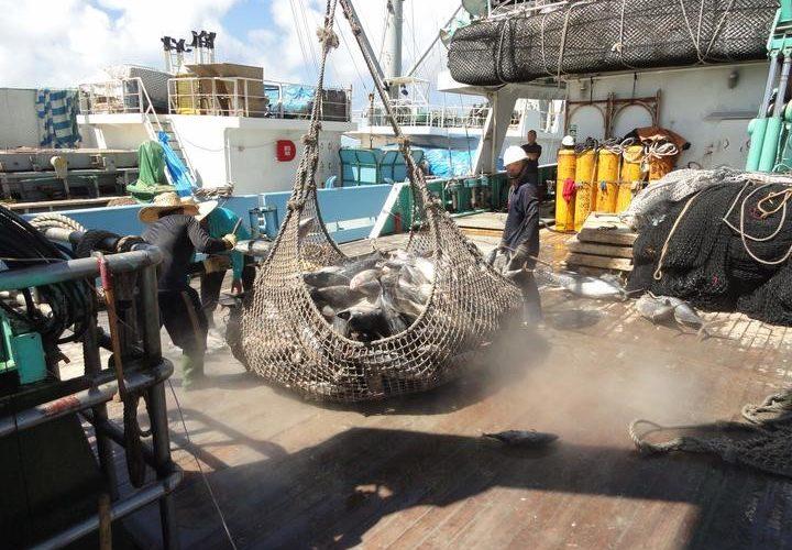 Marshall Islands drives tuna initiatives
