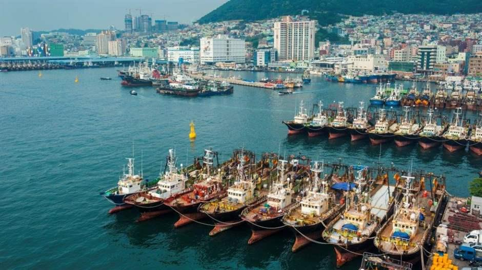 To Fight Illegal Fishing, Countries Need Effective Port Controls