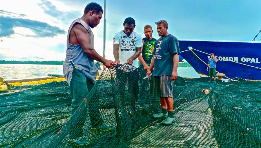 Mending the nets a challenging job: postcard from Noro