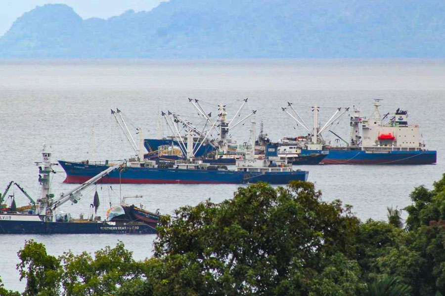 Three fishing vessels in Honiara waters, with trees in foreground and hills enclosing waterway in background. Photo: Ronald Toito'ona.