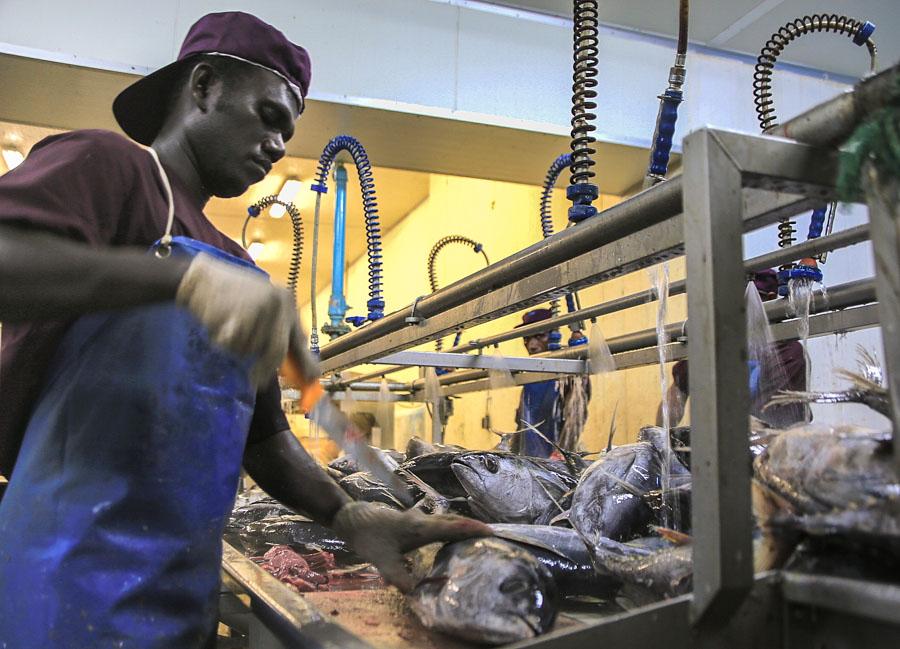 A fresh vision to take Solomons tuna fishery into a bright future