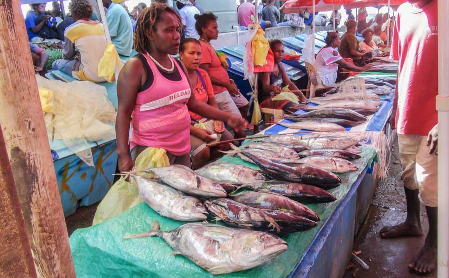 In Solomons, some fisheries sectors thrive while others struggle under pandemic rules