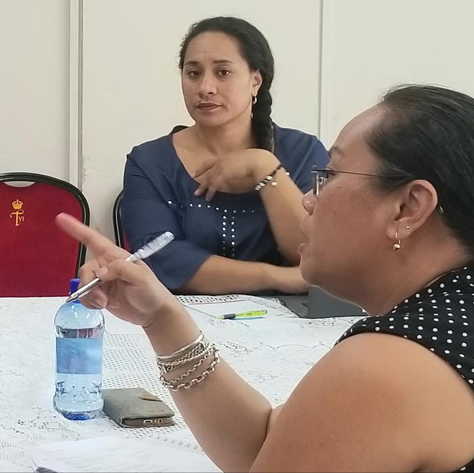 Tonga's Ocean Plan set for 2021 start