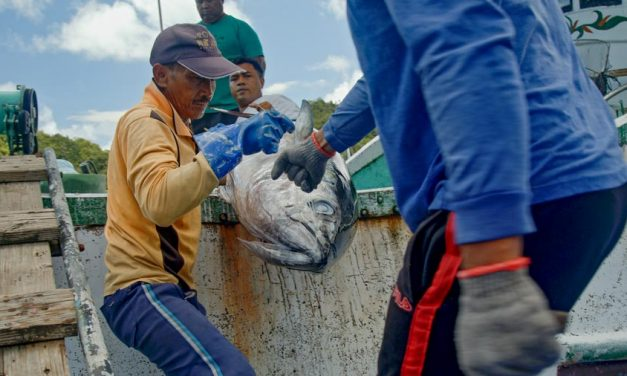 Palau creates new ministry that includes fisheries development in its focus